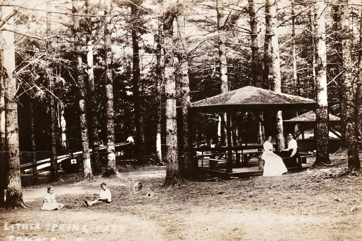 Lithia Spring Park featuring picnic shelters